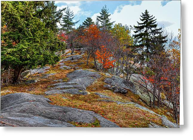Eagle Cliff Above Eagle Bay Ny Greeting Card by David Patterson
