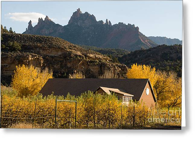 Geobob Greeting Cards - Eagle Crags and Trees Ranch Autumn Glory Springdale Utah Greeting Card by Robert Ford