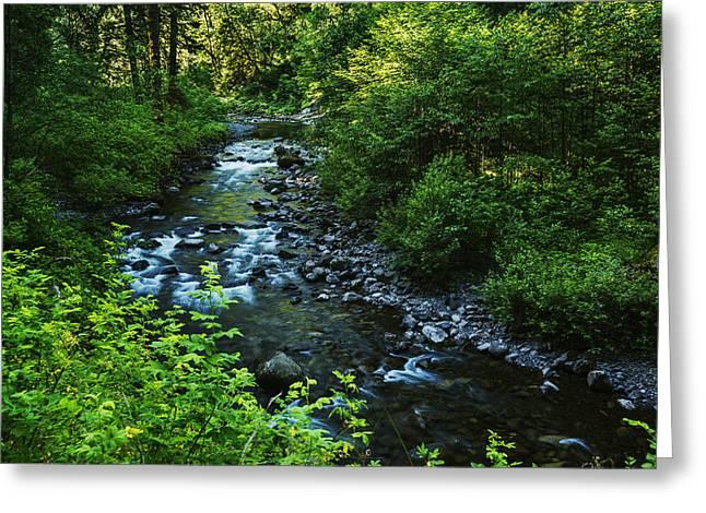 Eagle Creek Greeting Cards - Eagle Creek Greeting Card by Vishwanath Bhat