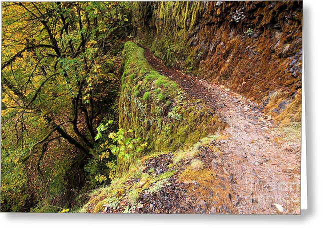Eagle Creek Greeting Cards - Eagle Creek Walk Greeting Card by Adam Jewell