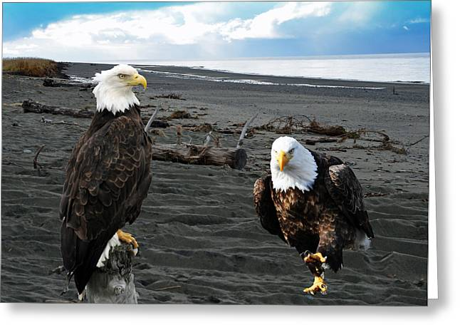 Eagle Determination Greeting Card by Debra  Miller