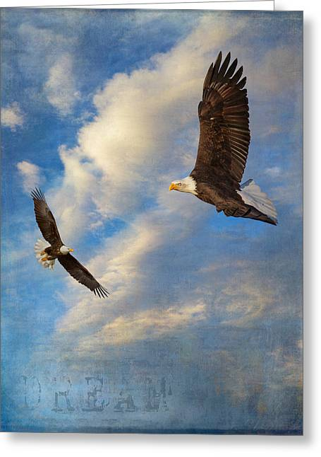 Birds Of Dreams Greeting Cards - Eagle Dream Greeting Card by Angie Vogel