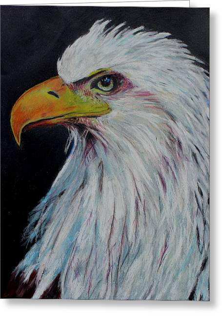 Eagles Pastels Greeting Cards - Eagle Eye Greeting Card by Jeanne Fischer