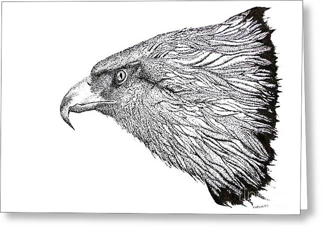 Hunting Bird Drawings Greeting Cards - Eagle Head drawing Greeting Card by Mario  Perez