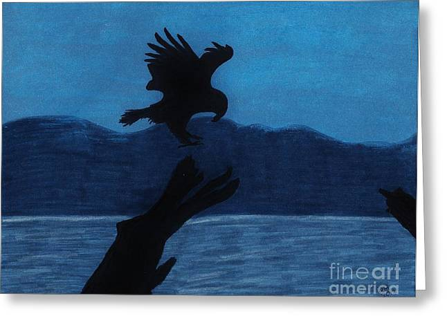 Bird On Tree Drawings Greeting Cards - Eagle In Alaska Greeting Card by D Hackett