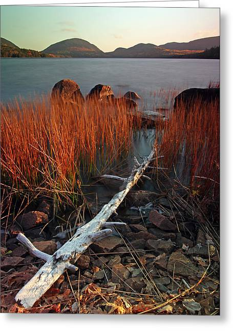 Photos Of Autumn Greeting Cards - Eagle Lake at Autumn Greeting Card by Juergen Roth