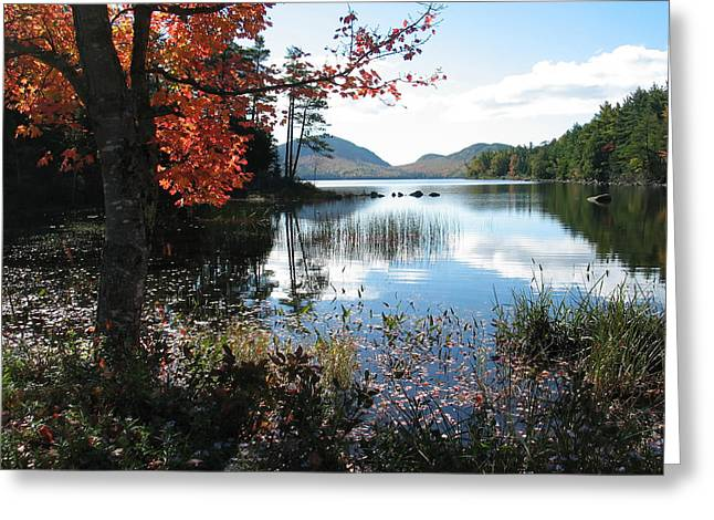Maine Landscape Greeting Cards - Eagle Lake in Autumn Greeting Card by Mountain Dreams