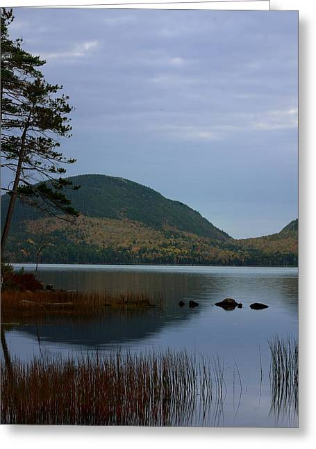 Maine Shore Greeting Cards - Eagle Lake Reflections Greeting Card by Don Dennis