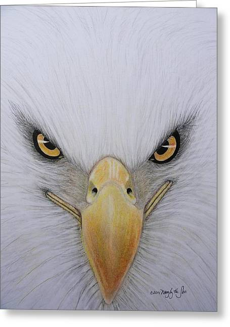 Eagle Pastels Greeting Cards - Eagle Greeting Card by Mary  By The Sea