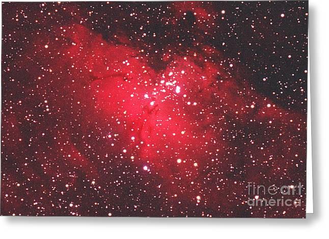 Eagle Nebula Greeting Cards - Eagle Nebula Greeting Card by Chris Cook