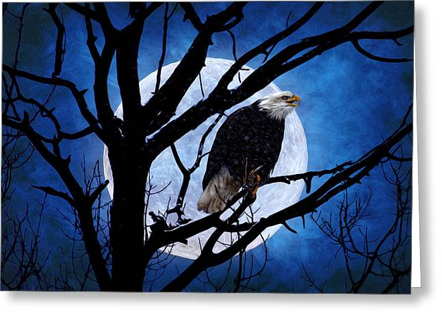 Eagle Night Greeting Card by Gary Smith