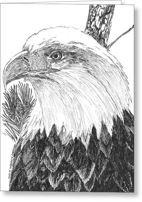 Hamptons Drawings Greeting Cards - Eagle on Loblolly Pine Greeting Card by Stephany Elsworth