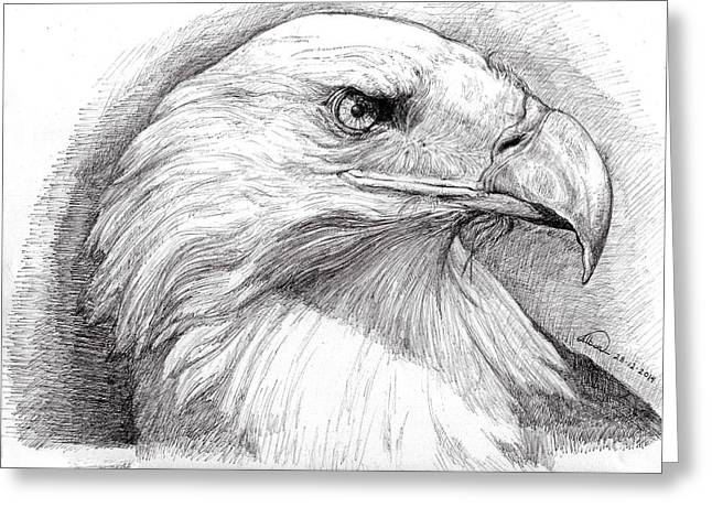 Eagle Drawing Greeting Cards - Eagle Portrait Greeting Card by Alban Dizdari