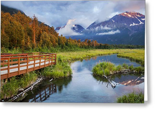 Nature Center Greeting Cards - Eagle River Valley Greeting Card by Kyle Lavey