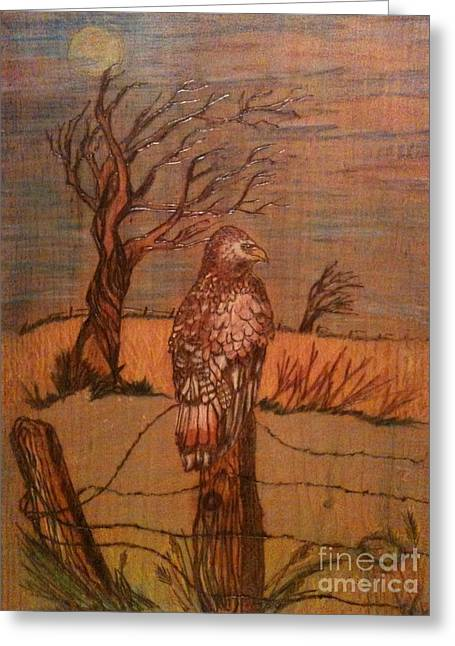 Barbed Wire Fences Pyrography Greeting Cards - Eagle Storm Greeting Card by Denise Tomasura