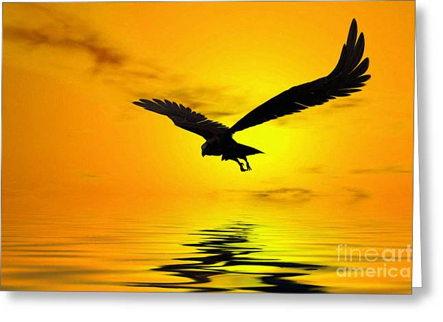 Eagle Feathers Greeting Cards - Eagle Sunset Greeting Card by John Edwards