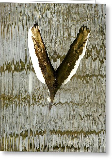 Geometric Style Greeting Cards - Eagle Wings Greeting Card by Marcia Lee Jones