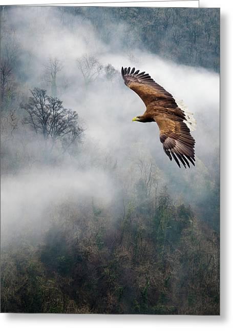 Digital Art Pyrography Greeting Cards - Eagles Dare Greeting Card by Ian David Soar