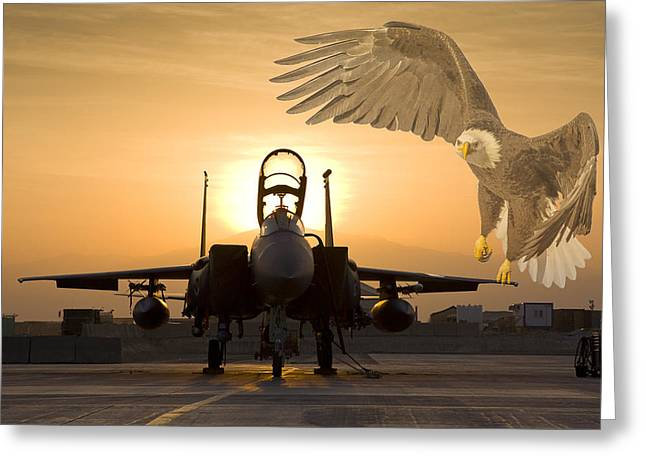X-15 Greeting Cards - Eagles in Afghanistan Greeting Card by Tim Grams