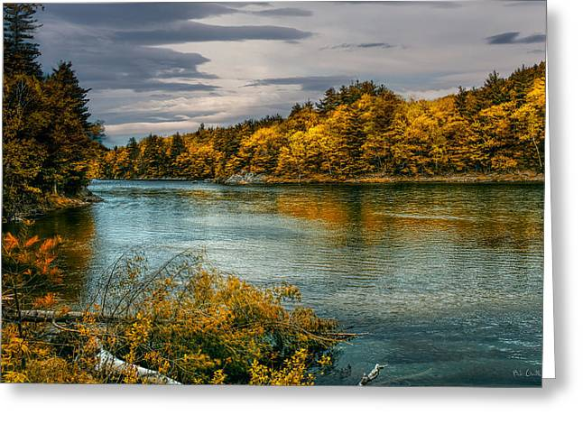 Androscoggin Greeting Cards - Early Autumn Along the Androscoggin River Greeting Card by Bob Orsillo