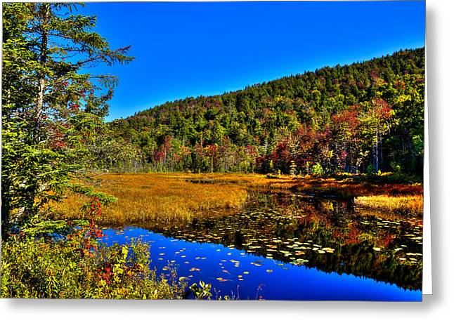 Tranquil Pond Greeting Cards - Early Autumn at Cary Lake Greeting Card by David Patterson