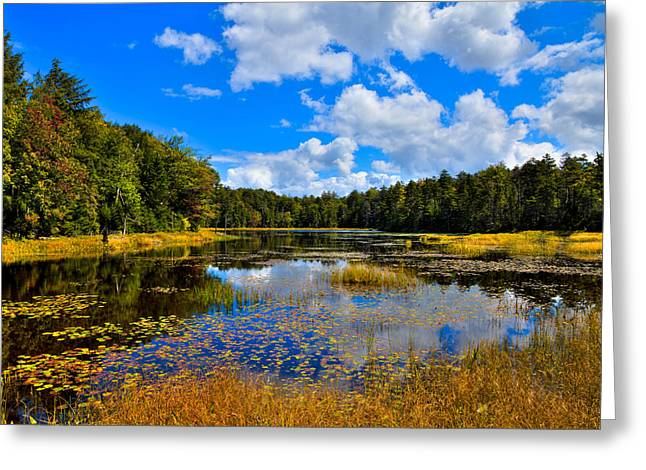 Early Autumn At Fly Pond - Old Forge New York Greeting Card by David Patterson