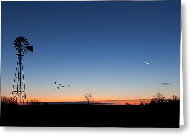 Windmill Greeting Cards - Early Birds Greeting Card by Bill  Wakeley