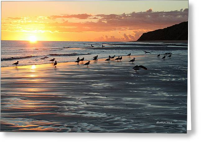 Early Birds Greeting Card by Dick Botkin