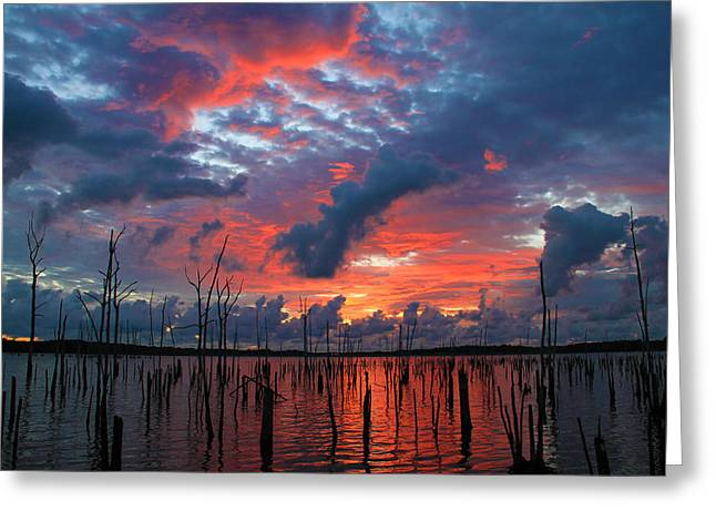 Manasquan Reservoir Greeting Cards - Early Dawns Light Greeting Card by Roger Becker
