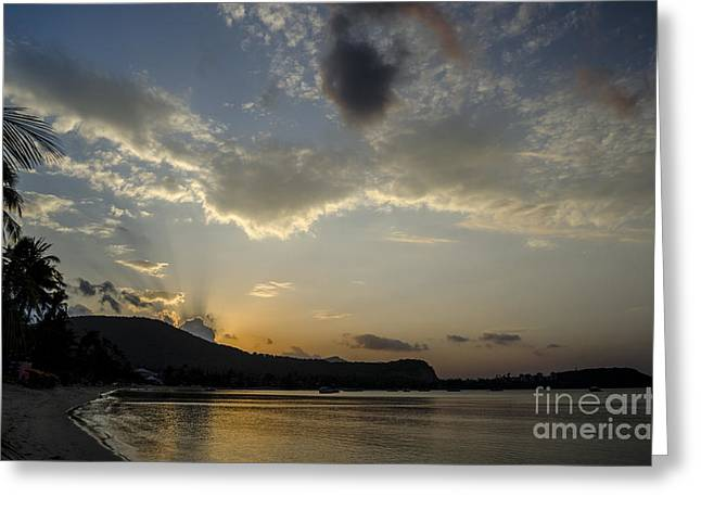 Michelle Greeting Cards - Early Evening Greeting Card by Michelle Meenawong