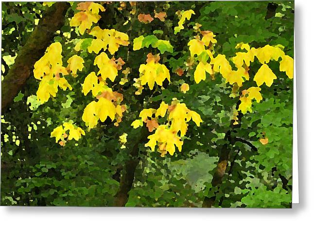 Pallet Knife Photographs Greeting Cards - Early Fall Color 26311 PKnife Greeting Card by Jerry Sodorff