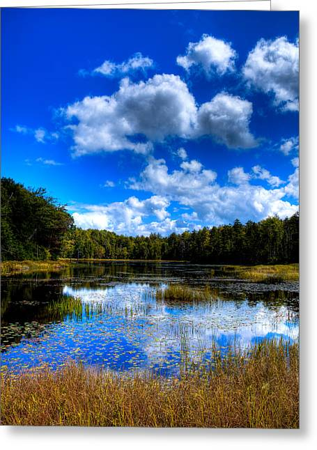 Fir Trees Greeting Cards - Early Fall Color on Fly Pond - Old Forge New York Greeting Card by David Patterson