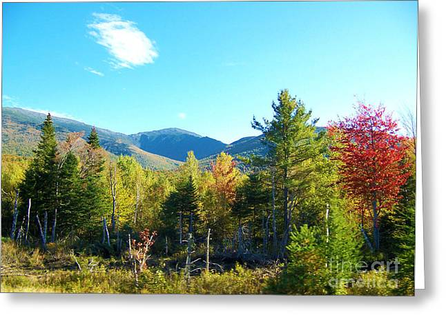 Maine Spring Greeting Cards - Early Fall in Maine Greeting Card by Helene Guertin