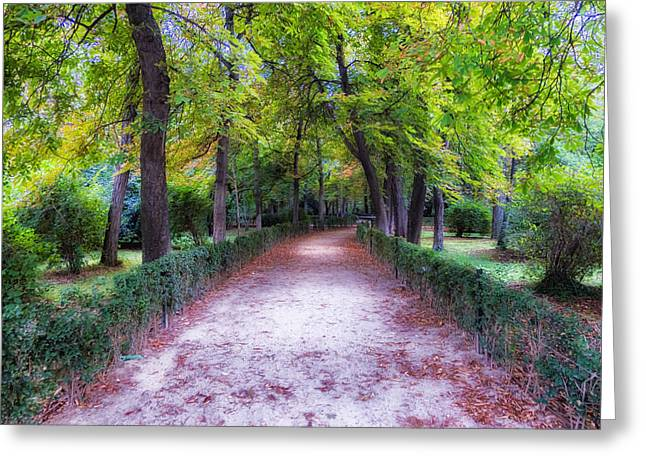 Hdr Landscape Greeting Cards - Early Fall in the Park Greeting Card by Mountain Dreams