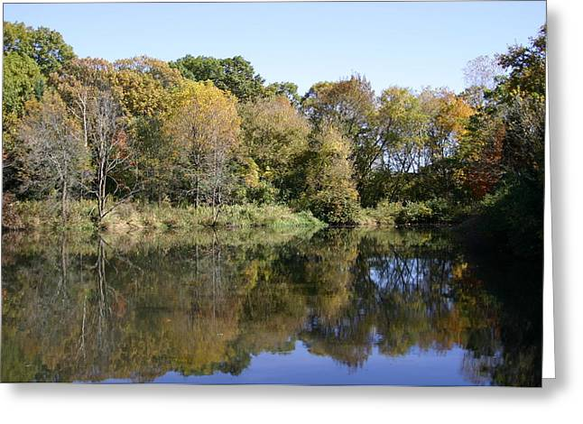 Early Fall in UW Arboretum Greeting Card by Natural Focal Point Photography