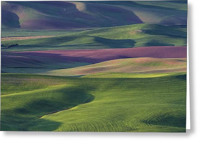 Contours Greeting Cards - Early Light in the Palouse Greeting Card by Latah Trail Foundation