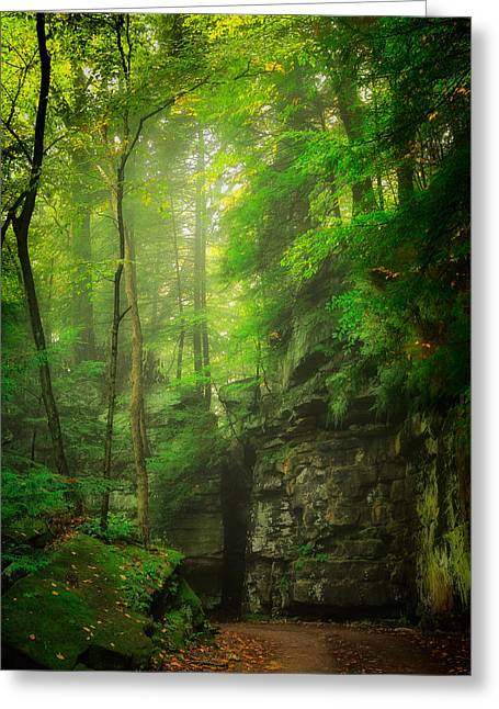 Maine Farms Greeting Cards - Early Mist 2 Greeting Card by Emmanuel Panagiotakis