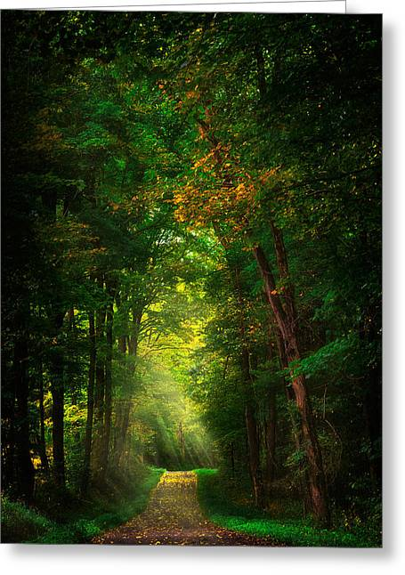 Maine Farms Greeting Cards - Early  Mist  Greeting Card by Emmanuel Panagiotakis