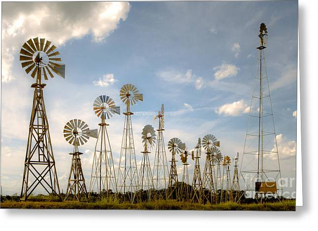Aermotor Greeting Cards - Early Model Wind Farm Greeting Card by Robert Frederick