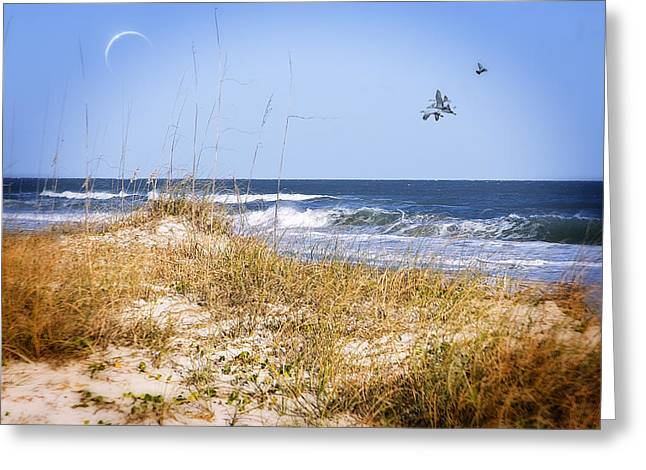 Recently Sold -  - Moon Beach Greeting Cards - Early Moon Greeting Card by Mary Timman
