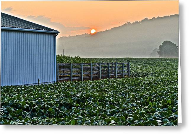 Amish Farms Greeting Cards - Early Morning at the Farm Greeting Card by Frozen in Time Fine Art Photography