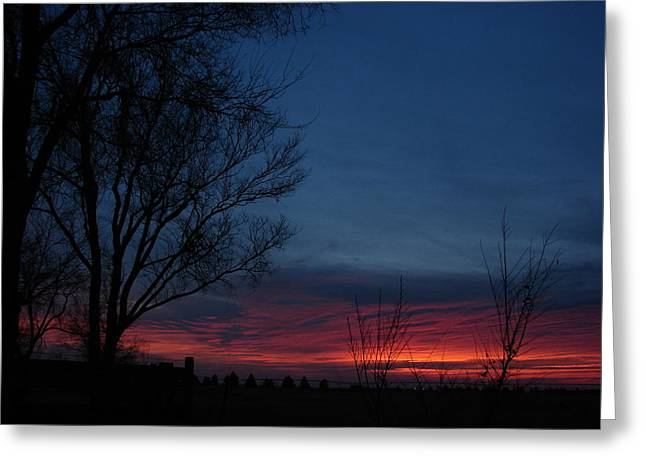 Western Pyrography Greeting Cards - Early Morning Blue Sunrise Greeting Card by Cary Amos