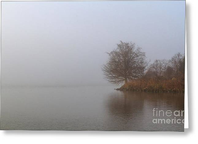 Fall Grass Greeting Cards - Early Morning Fog Greeting Card by David Cutts