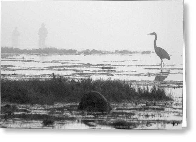 Early Morning Fog Greeting Card by Mike McGlothlen