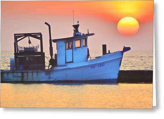 Fishing Boats Greeting Cards - Early Morning Fulton Harbor Greeting Card by R E Dub