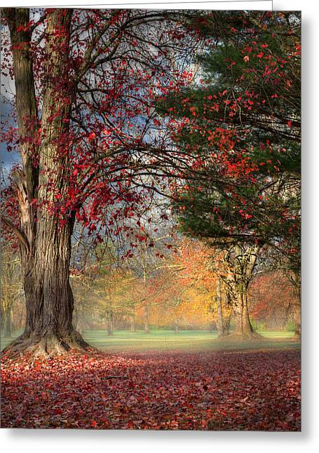 Fall Landscape Greeting Cards - Early Morning In The Park Greeting Card by Bill  Wakeley