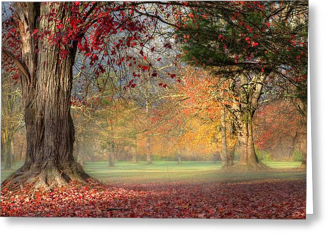 Long Shadows Greeting Cards - Early Morning In The Park Square Greeting Card by Bill  Wakeley