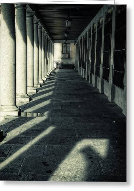 Early Morning Light Greeting Card by Joan Carroll