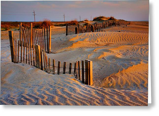 Early Morning On The Dunes I Greeting Card by Steven Ainsworth