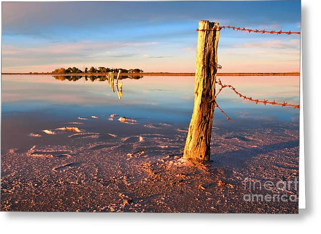 Barbed Wire Fences Greeting Cards - Early Morning Salt Pan Greeting Card by Bill  Robinson